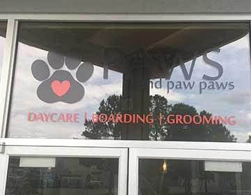 Paws Window Decal